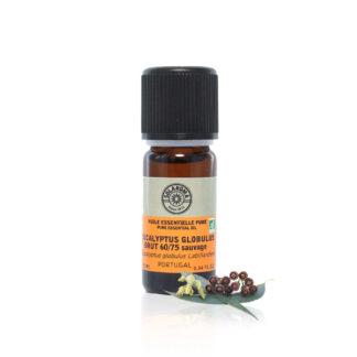 Huile essentielle Eucalyptus globulus bio, purifiante, aide à lutter contre les désagréments des voies respiratoires et à purifier l'air ambiant. Pour les massages ou en aromathérapie.